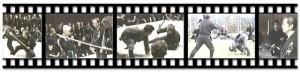 taikai1991-SE-dumps